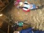 Réunion nutons: à la ferme